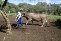 FJNH-10-NUESSLI-EN-NANTES-GEBORE-9-MAART-2012